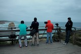 The Twelve Apostles photographers early in the morning waiting the sunrise Great Ocean Road Victoria