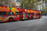 Visit Australian town by bus City sightseeing Sydney explorer Australia