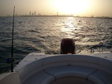 Boat Seabreeze 26 Abu Dhabi fishing sport