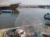 Oman Dibba Fish trap harbour tradional fishing technique