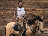 Stockman fron New Caledonia horse rider rodeo