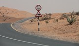 road sign desert camel chameau dromadaire limitation vitesse speed limit