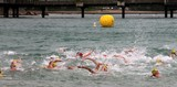 Natation triathlon nageur swimmer swimming tips Noumea New Caledonia Nouvelle-Calédonie ligue de triathlon